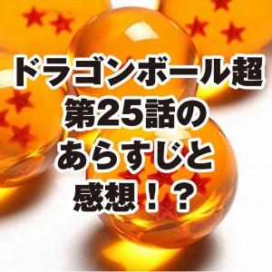 dragonballsuper25