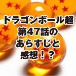 dragonballsuper47